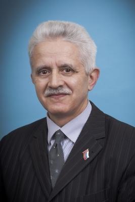 Василий Гаман